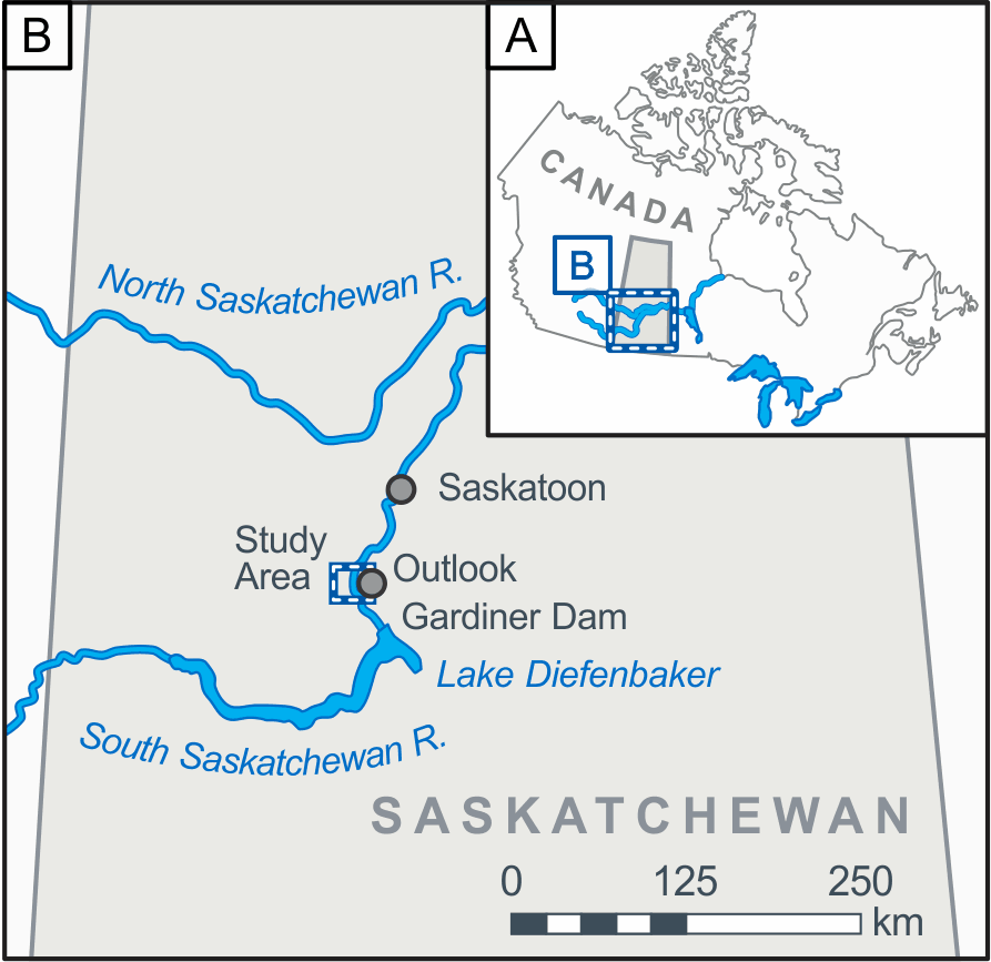 Map showing the location of the study reach on the South Saskatchewan River near the town of Outlook, Saskatchewan, Canada.